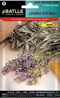 comprar comparacion Semillas Aromáticas - Lavanda officinalis - Batlle