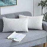 Yeadous - Juego de 2 fundas de cojín decorativas para sofá cama, diseño de rayas onduladas de terciopelo clásico, 30 x 50 cm, 30 x 50 cm, 2 unidades