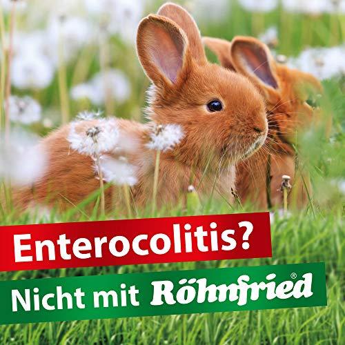 Röhnfried Darmwohl Nahrungsergänzung (250 ml) für Nager, Geflügel & Kleintiere, geförderte Verdauung & erleichterte Aufzucht, mit Oregano & Bartflechte - 3