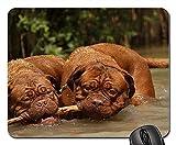 Gaming Mouse Pads,Mouse mat,Bordeaux Dogue Dog Animal White De Mastiffs