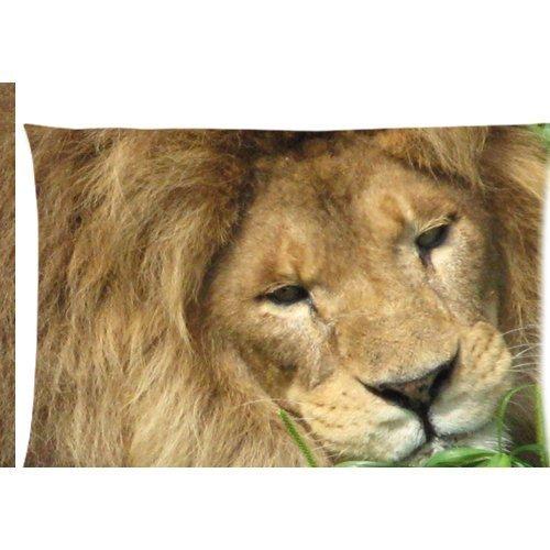 Pensée Lion dans le zoo Housse d'oreiller zippée 50,8 x 76,2 cm