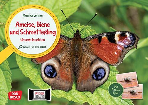 Ameise, Biene und Schmetterling. Unsere Insekten. Kamishibai Bildkarten und Memo-Spiel: Sachwissen spannend vermitteln mit dem Erzähltheater. Für Kita ... für unser...