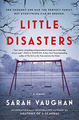 Image of Little Disasters: A Novel
