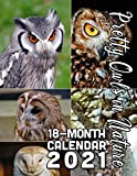 Pretty Owls in Nature 18-Month Calendar 2021: October 2020 through March 2022