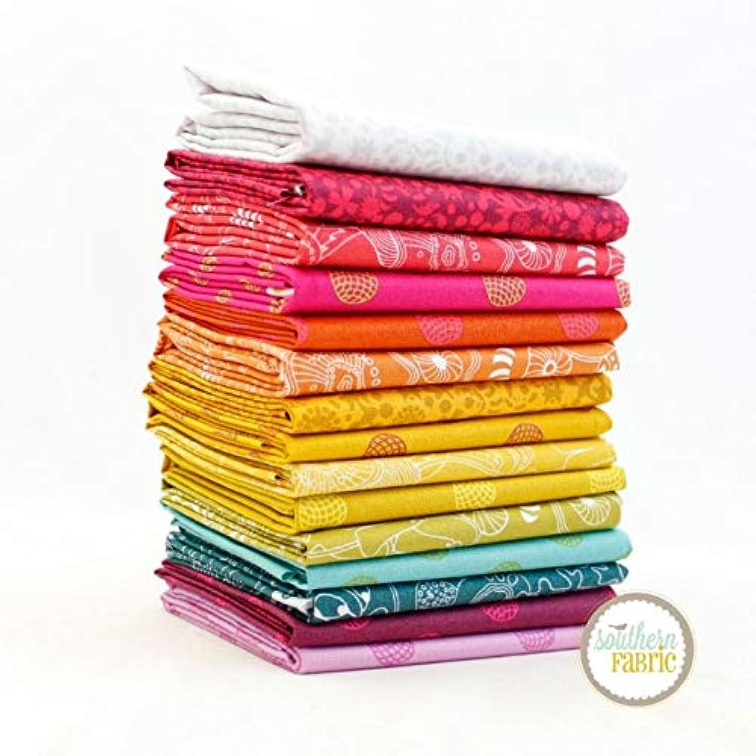 Andover Sun Print 2016 Fat Quarter Bundle (15 pcs) by Alison Glass 18 x 21 inches (45.72cm x 53.34cm) Fabric cuts DIY Quilt Fabric