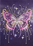 5D DIY Diamond Painting by Number Kits, Butterfly Painting,Special Shape Rhinestone Partial Diamond Handmade Kits Diamond Embroidery Painting for Home Decoration or Gifts (Butterfly)