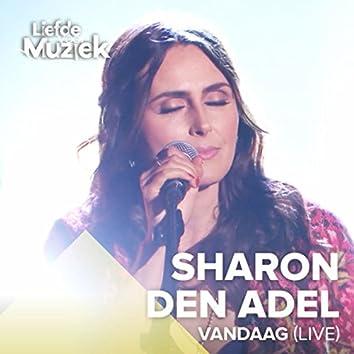 Vandaag (Uit Liefde Voor Muziek) (Live)
