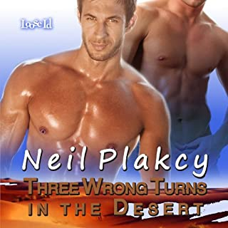 Three Wrong Turns in the Desert audiobook cover art