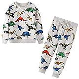 JinBei Conjuntos Deportivos para Niño Dinosaurio Gris Chándales Conjunto Sudaderas Sweater Pantalones Ajustable Cinturón Algodon Otoño Invierno Trajes Disfraces bebé 2-7 años
