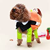 BlueSpace Pet Costume Dog Cat Pumpkin Pets Suit Halloween Costumes Pets Clothing for Small Dogs and Cats, Perfect for Halloween Christmas and Theme Party, S