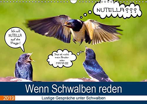 Wenn Schwalben reden (Wandkalender 2019 DIN A3 quer): Eine lustige Reise mit jungen Schwalben und ihren spritzigen Kommentaren durch das ganze Jahr. (Monatskalender, 14 Seiten ) (CALVENDO Tiere)