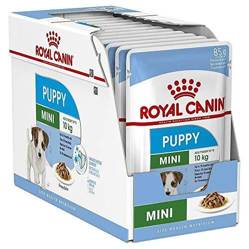PUPPY Royal CANIN 12 BUSTINE da 85 Gr Mini Cibo Umido per Cuccioli Piccola Taglia