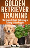 Golden Retriever training guide