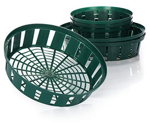 com-four® 6-teiliges Set Pflanzkörbe für Blumenzwiebeln, Anzucht-Pflanzschale zum Einpflanzen und Aufbewahren von Zwiebelpflanzen, grüne Zwiebelkörbe (06teilig Set Pflanzschale - 22cm 31cm)