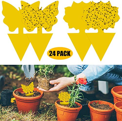 XQ-HD 24 Pack Dual-Sided Yellow Sticky Traps Gnat Trap PVC Waterproof for Insect Against Fungus Gnats,Whiteflies,Aphids,Leafminers,Flying Plant Insect