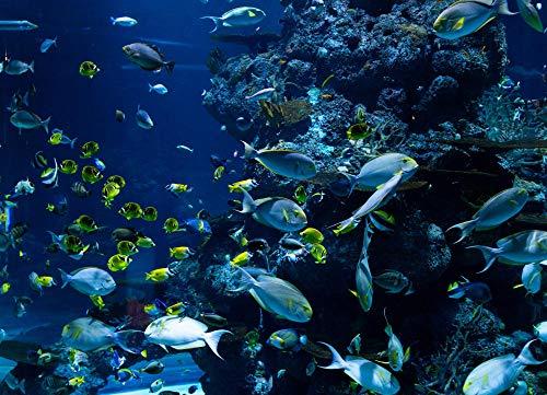 ZYDZYD Schwimmende Korallenrifffischgruppe des Aquariums,40x50 cm DIY malen nach Zahlen Erwachsene Kinder Leinwanddruck Wandkunst - Ohne Rahmen