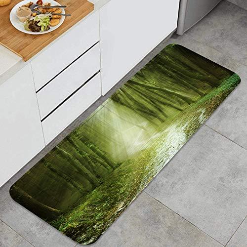 AndrewTop Cocina Antideslizante Alfombras de pie Sombras y luz del Sol del Bosque de Cuento de Hadas Decoración de Piso Confortables para el hogar, Fregadero, lavandería-120cm x 45cm