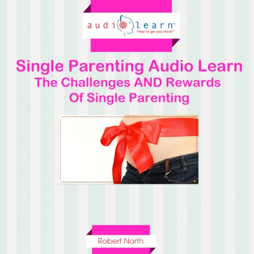 Single Parenting Audio Learn audiobook cover art