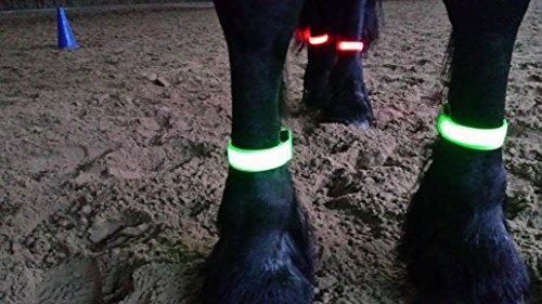 Rutis Horse Leg Stripes LED Fessellbeleuchtung per USB aufladbar (M, Grün)