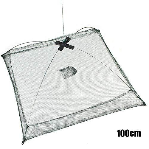 ZARRS Redes Telesc/ópicas,4 Pack Butterfly Net Extensible Redes de Pesca con la Manija Estirable para Atrapar Insectos Mariposa Insectos Peces Peque/ños