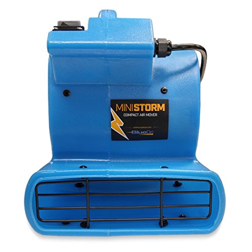 BlueDri Mini Storm 1/12 HP Mini Air Mover Carpet Dryer Floor Squirrel Cage Blower Fan for Home Floors and Carpets, Blue (SA-MI-BL)