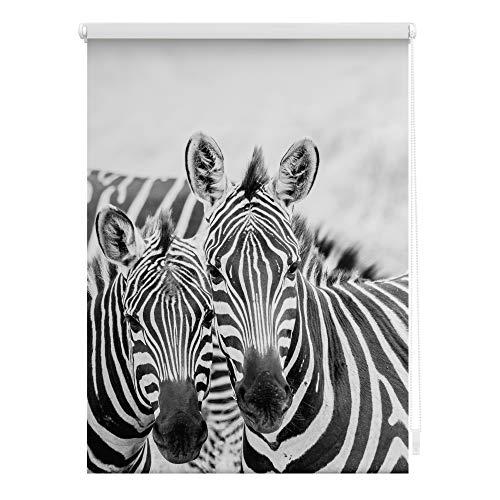 Lichtblick KRT.090.150.372 Rollo Klemmfix, ohne Bohren, Blickdicht, Zebra - Schwarz Weiß 90 x 150 cm (B x L)
