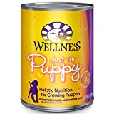 Wellness Complete Canned Puppy Food