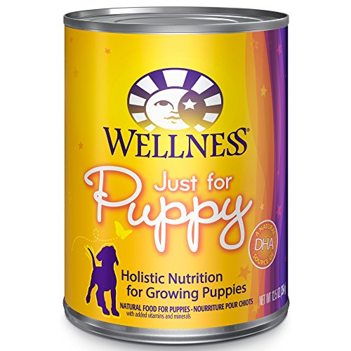 Wellness Natural Complete Health Wet Canned Dog Food