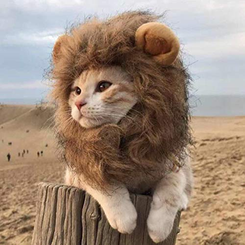 Ulalaza Disfraz de Melena de león para Gato y Perro Divertido Mascota Cosplay Gorra de Peluca Fiesta de Halloween Cosplay Disfraz de Cabeza Adorable Sombrero de Mascota