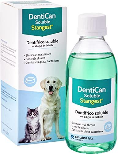 Stangest DentiCan Soluble | Dentífrico Soluble para Perros y Gatos | Higiene Bucal | Elimina Mal Aliento | Controla la Placa y Sarro | 250 ml
