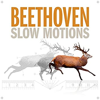 Beethoven Slow Motions