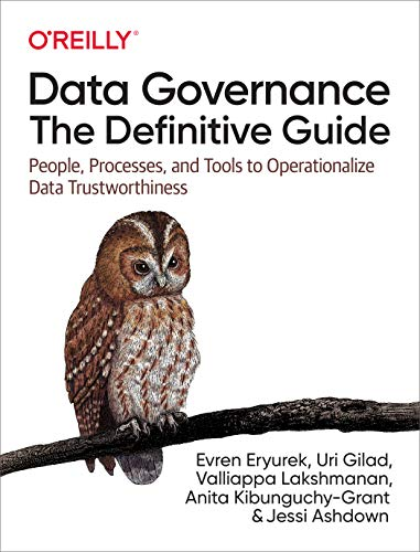 Data Governance: The Definitive Guide: People, Processes, and Tools to Operationalize Data Trustworthiness (English Edition)