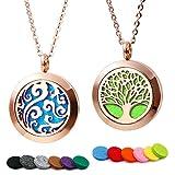 RoyAroma 2PCS Rose Gold Aromatherapy Essential Oil Diffuser Pendant Locket Necklace, 24' Adjustable...