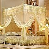 Tres Puertas Abierto Princesa Mosquitero Cortinas Cama Matrimonial Cama Cortina para Dormir Canopy Net Reina Llena Tamaño Red