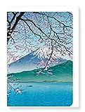 Mount Fuji im Frühjahr