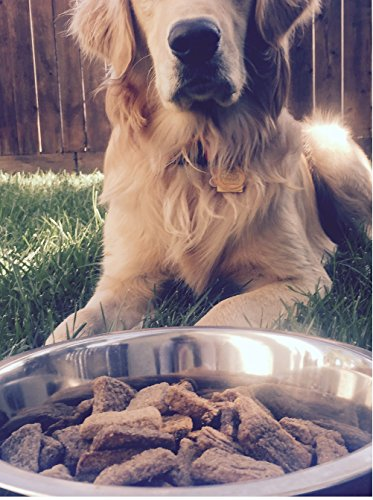 Plato Dog Treats - Turkey With Sweet Potato- 12 Oz