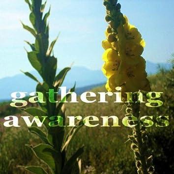 Gathering Awareness (Deep Progressive House Music)