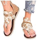 riou Sandalias para mujer Verano Vintage Zapatos de Punta Abierta Plataforma 2021 Sandalias de Confort Zapatillas Planas de Mujer Chanclas con Punta de Clip de Playa