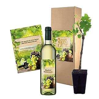 Wein-Geschenk-Mein-WeinGut