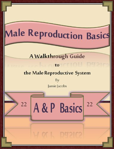 Male Reproduction Basics: A Walkthrough Guide to the Male Reproductive System (A&P Basics Book 22) (English Edition)