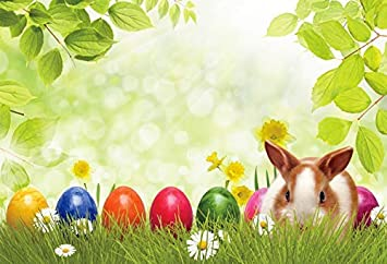 12x8FT Easter Backdrop Colorful Eggs Cute Happy Rabbit Green Grass and Leaves Backdrops for Photography Baby Newborn Children Easter Party Decorations Polyester Studio Props