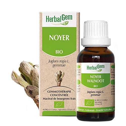 Herbalgem | Noyer BIO | Gemmothérapie Concentrée | Bourgeons de Noyer | 50 ml