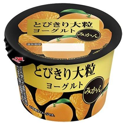 北海道乳業 とびきり大粒ヨーグルトみかん 120g×12個「クール便でお届けします」