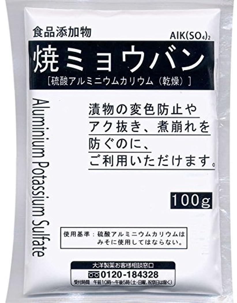 金銭的性的急行する焼ミョウバン 100g