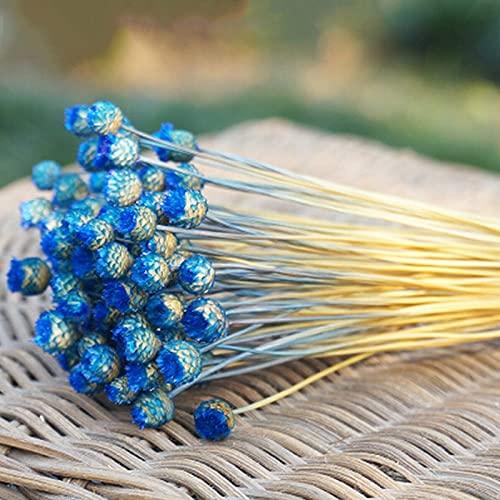 Kaxceay Heiße Blumen 50 Stiele Getrocknete Blumen für Arrangements Bündel Home Decor Foto Requisiten Handgemachte Lufttrocknung (Color : Dark Blue)