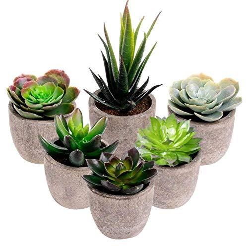 Pflanzen mit Töpfen,Künstliche Sukkulenten,6 Stück Klein Dekorativ Pflanzen,Kunstpflanze Topfpflanze,Künstliche Sukkulenten,Künstliche Topfpflanze mit Topf,künstlichen Sukkulenten mit Töpfen
