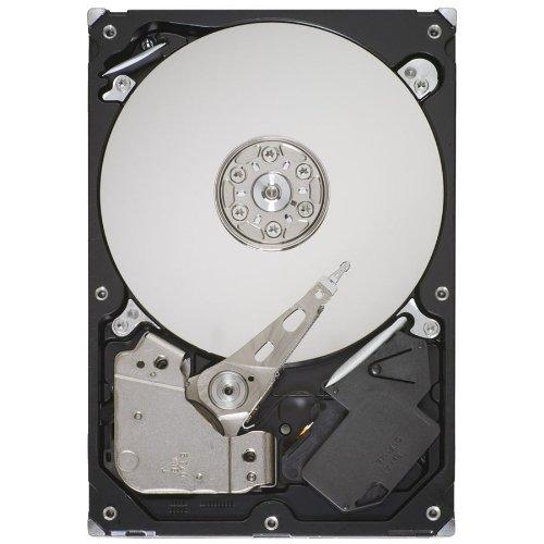 Seagate ST31000524AS 3,5 Zoll 1 TB Festplatte (Serial-ATA, 6 GB/s, 32 MB, 7200 U/min)