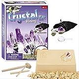 PowerKing Kit de excavación, Conjunto de Herramientas de excavación geográfica, Conjunto de minería de Cristal, Juguete Stem para niños y niñas.