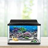 Papel de fondo de pecera, imagen HD, póster de decoración de pecera engrosada, para acuario, tienda de peces, pecera, hogar(76 * 30cm)