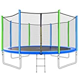 Merax 12FT Trampoline with Safety Enclosure Net, Ladder, Trampoline for Kids (12FT Green Blue)